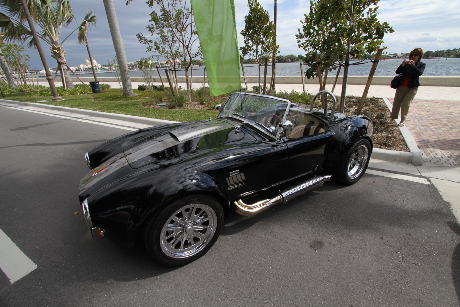 shelby-black.JPG