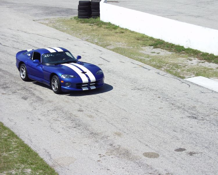 viper-corvette-5200006.jpg