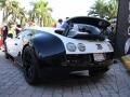 Toy-Rally-2014-veyron-pur-blanc3