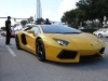 toy-rally-fort-lauderdale-2013-aventador-yellow-3