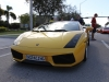 toy-rally-fort-lauderdale-2013-gallardo-yellow-2