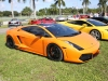 toy-rally-fort-lauderdale-2013-lambos-5