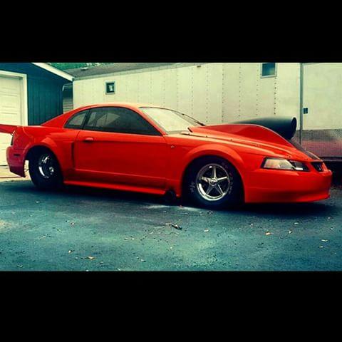 Canadian No Prep Mustang