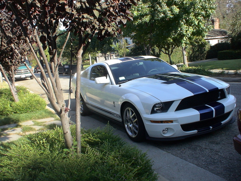 2007  Ford Mustang Shelby-GT500 GT500 picture, mods, upgrades