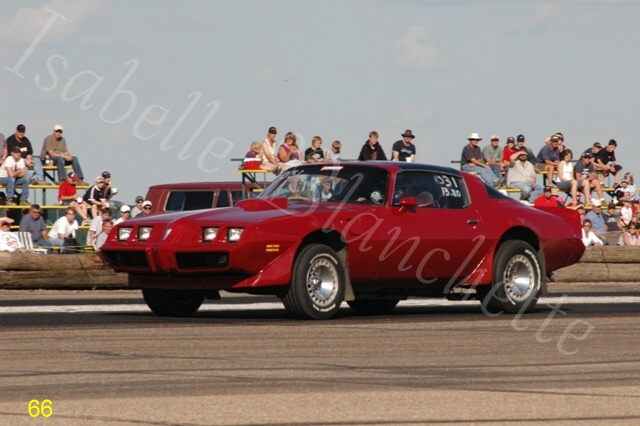 1981  Pontiac Trans Am  picture, mods, upgrades
