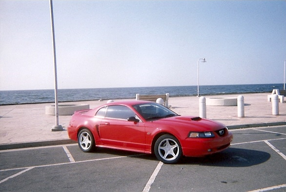 2000  Ford Mustang GT picture, mods, upgrades