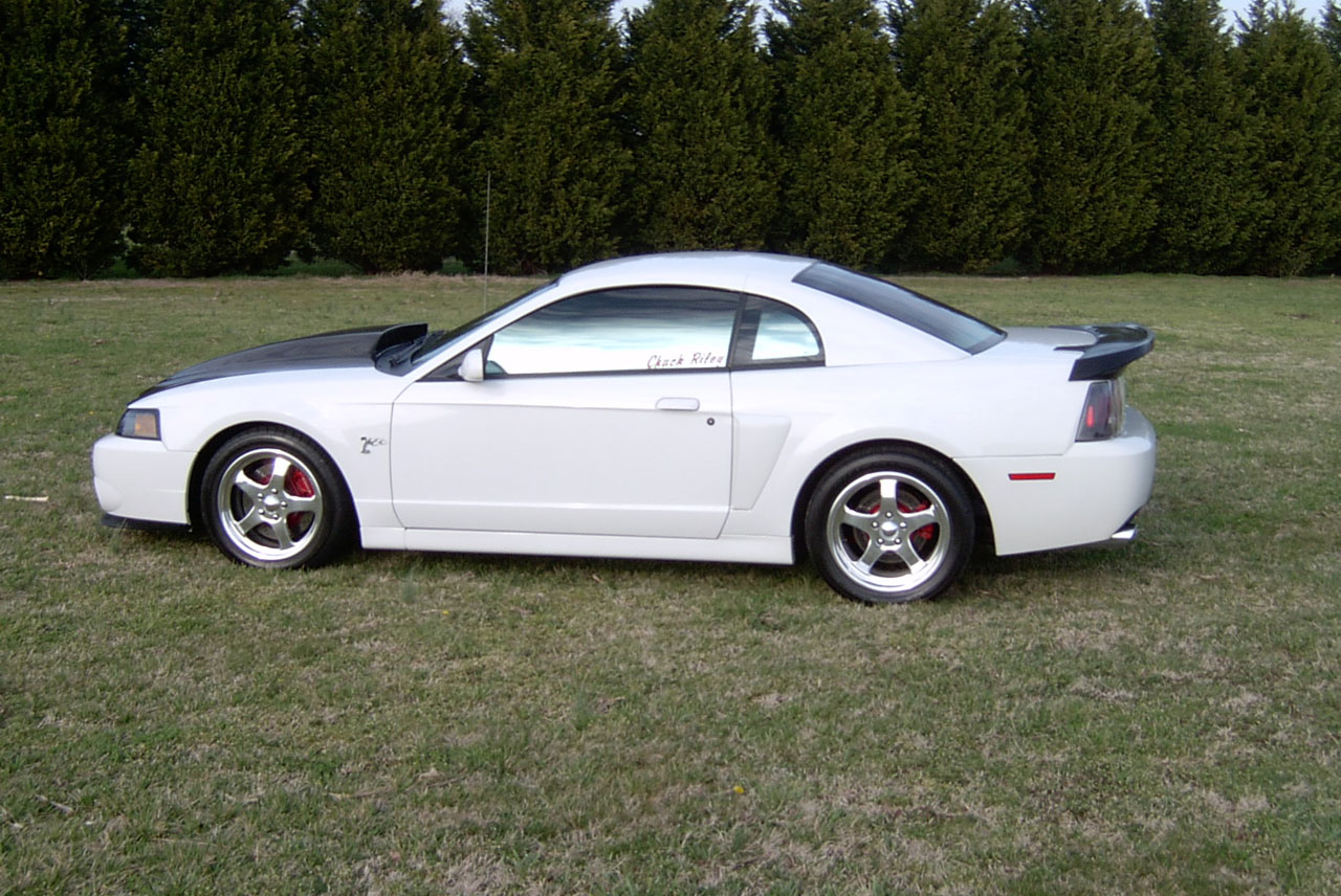 2003  Ford Mustang Cobra picture, mods, upgrades