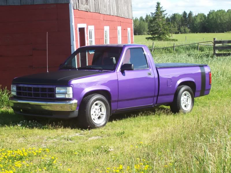 1995  Dodge Dakota  picture, mods, upgrades