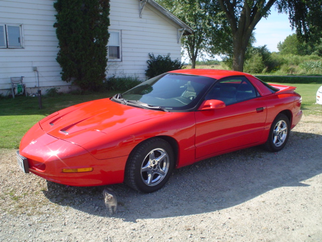 1994  Pontiac Firebird Formula LT1 picture, mods, upgrades