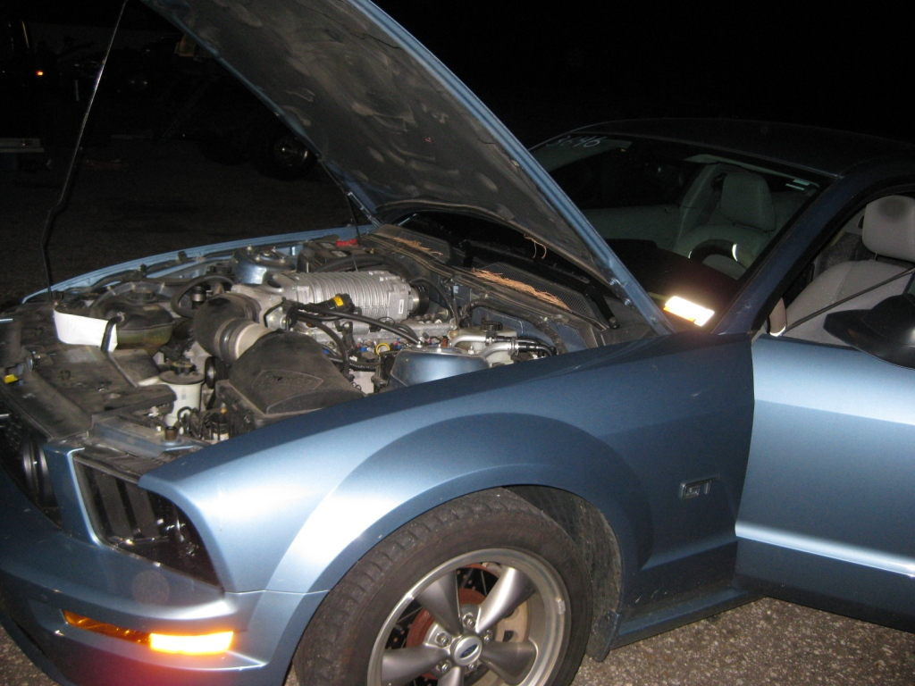 2005  Ford Mustang GT MagnaCharger picture, mods, upgrades