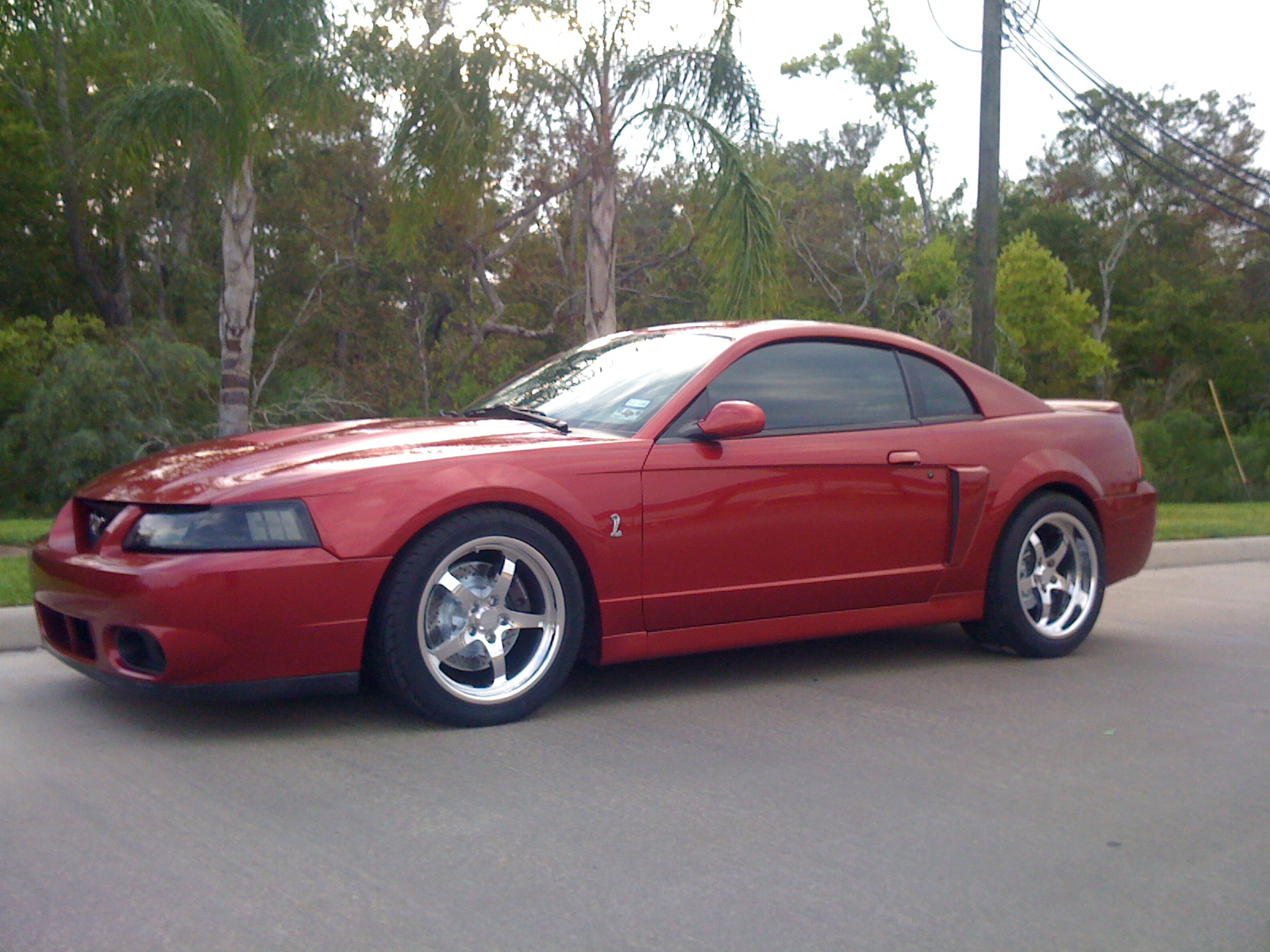 2003  Ford Mustang SVT COBRA picture, mods, upgrades
