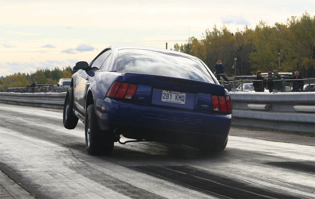 2003  Ford Mustang Cobra SVT picture, mods, upgrades