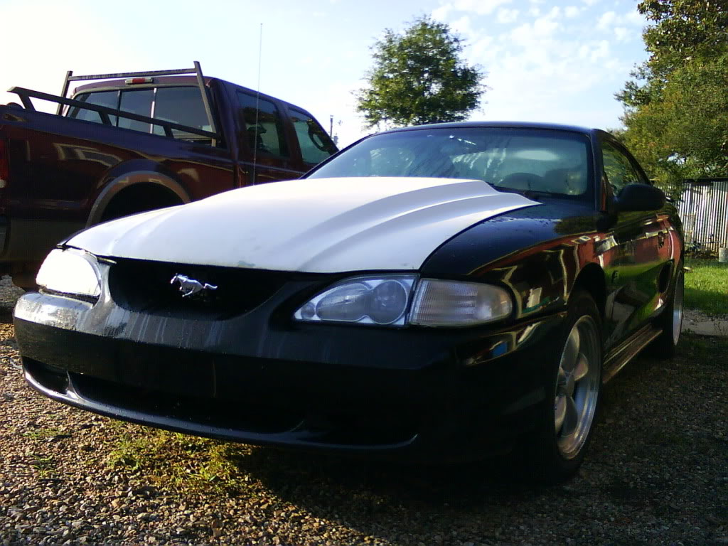 1995 Black Ford Mustang GT picture, mods, upgrades