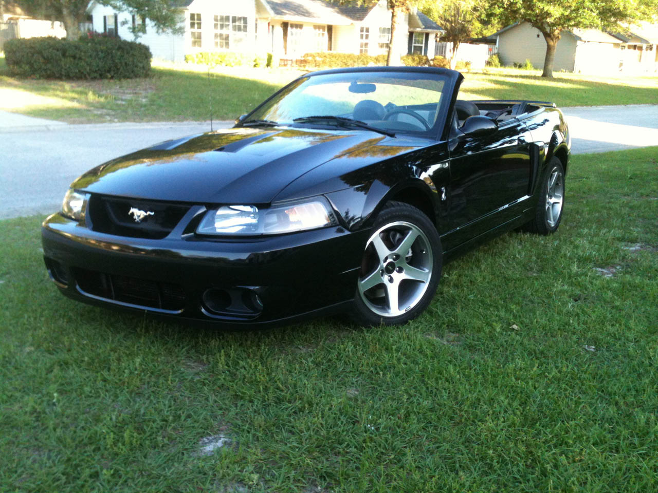 Black 2003 Ford Mustang Cobra Eaton Supercharged