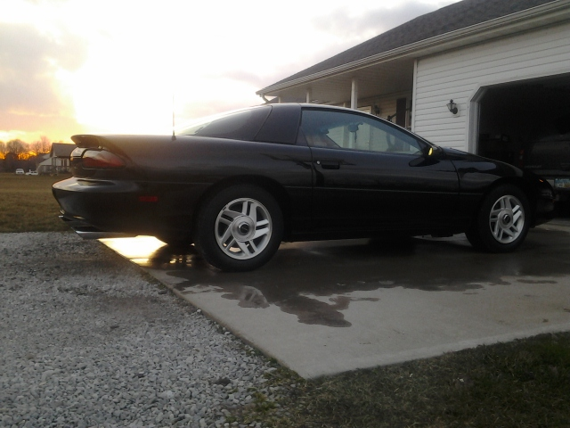 1995 Black Chevrolet Camaro Base picture, mods, upgrades