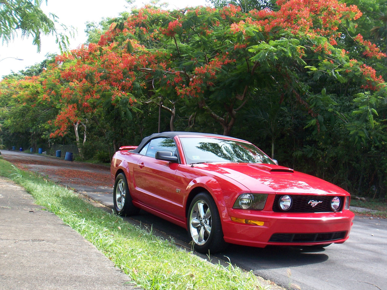 2007 Red Ford Mustang Convertible GT Roush Stage 1 picture, mods, upgrades