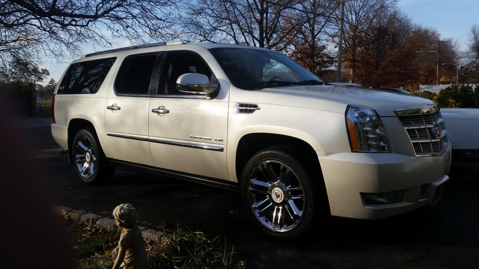 Pearl White 2009 Cadillac Escalade Esv Platinum