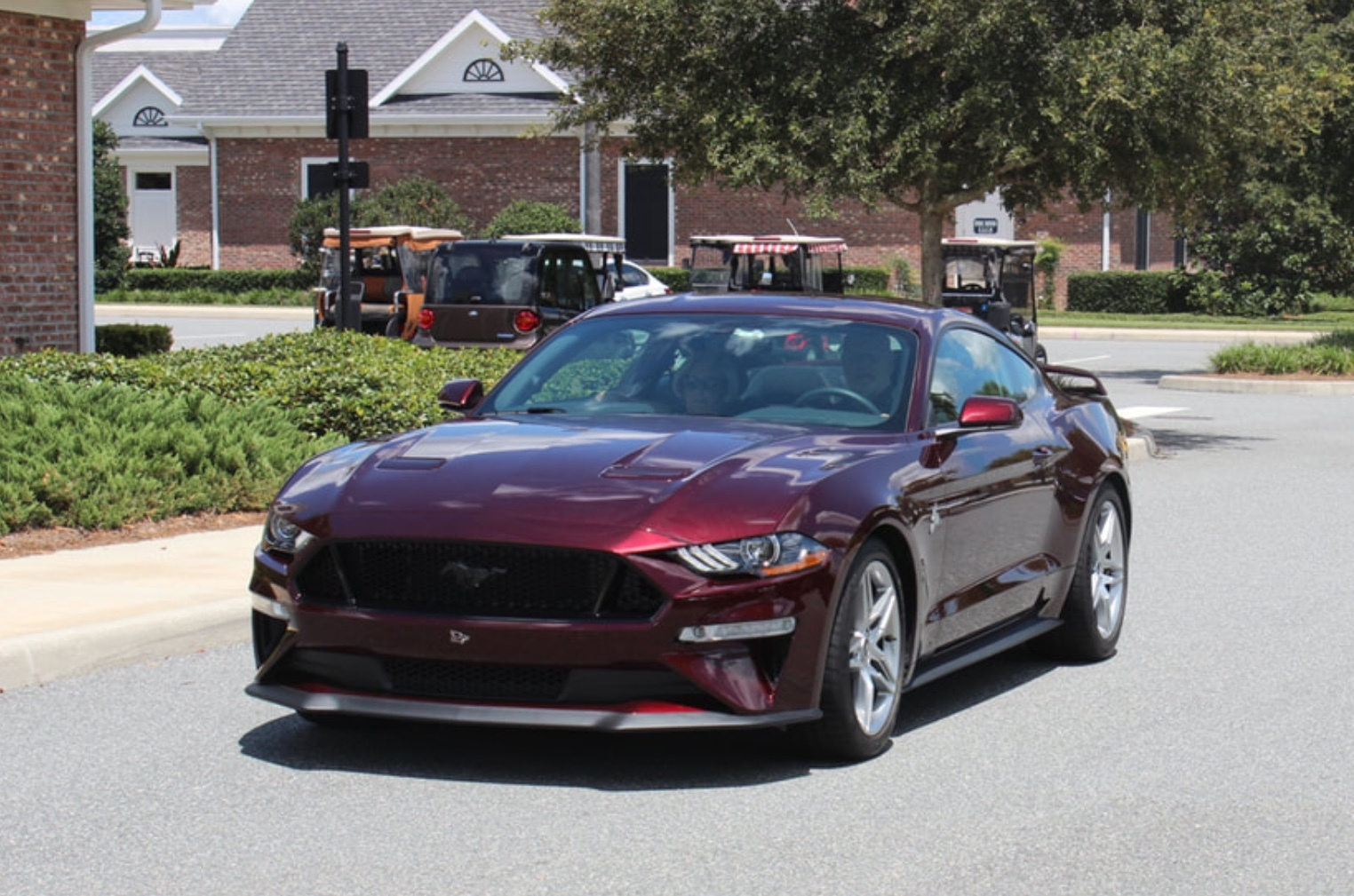 Royal crimson 2018 ford mustang gt pp1 auto