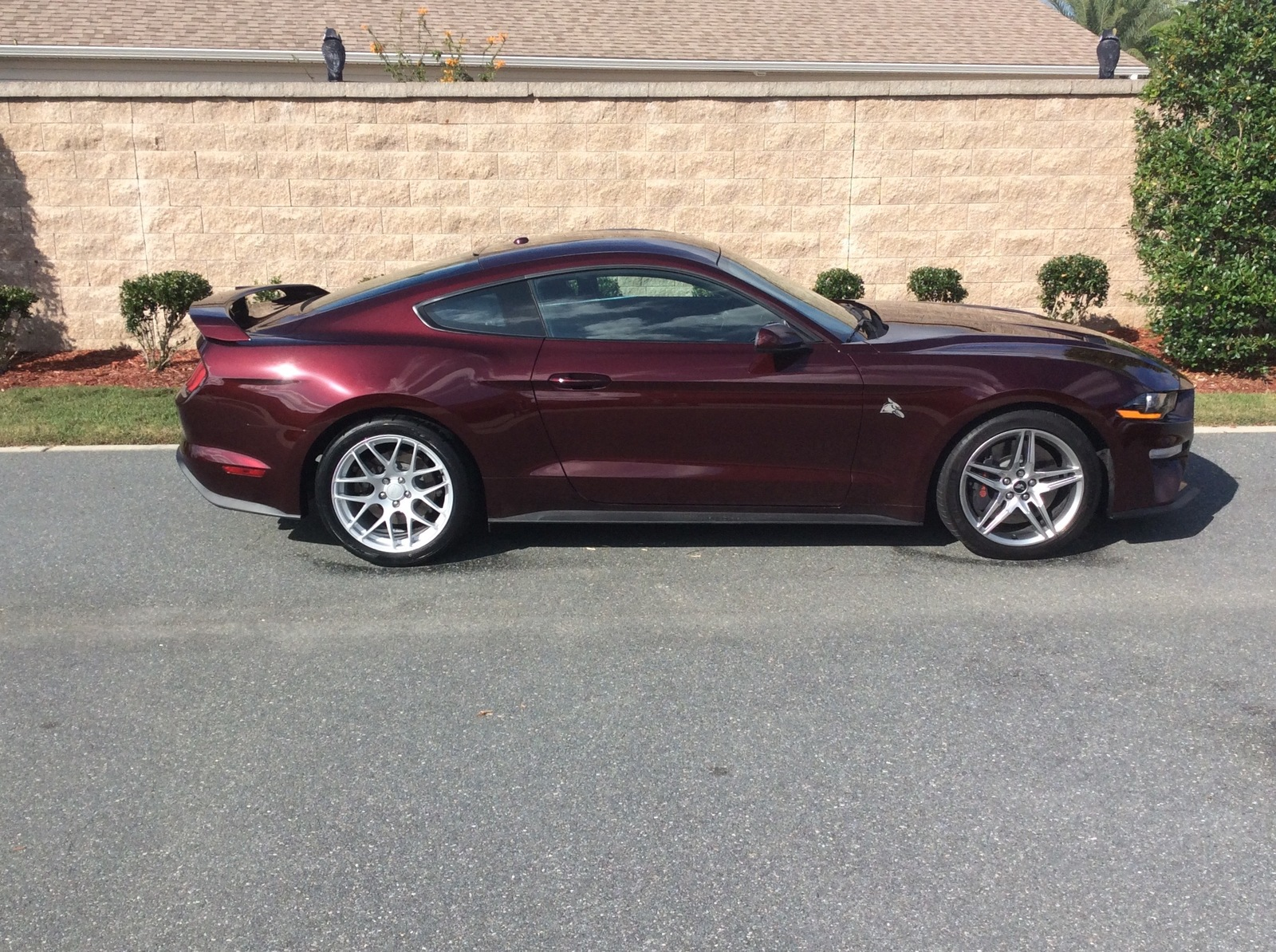 Royale Crimson  2018 Ford Mustang GT PP1 Auto