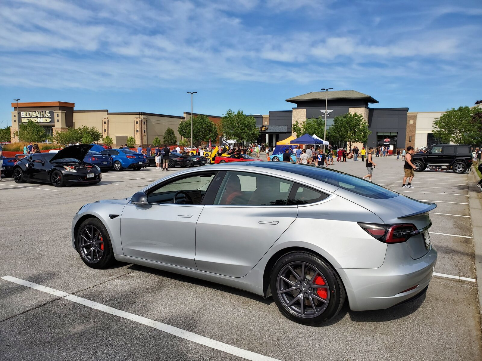 Silver 2019 Tesla Model 3 Performance with PUP and Aero wheels