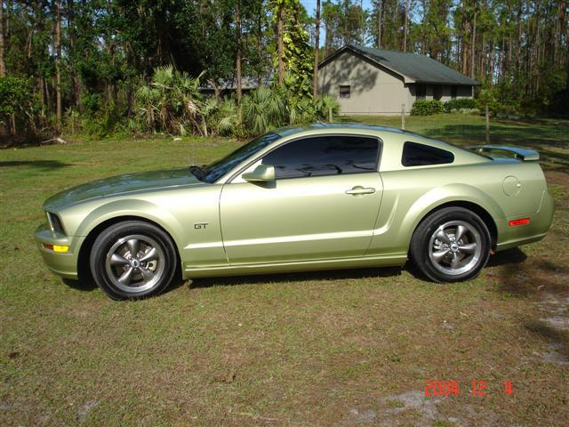 2005  Ford Mustang GT picture, mods, upgrades