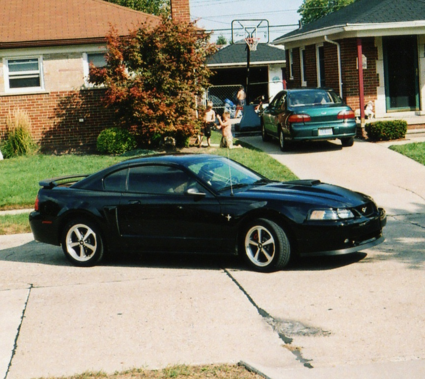 2003  Ford Mustang GT 4.6l picture, mods, upgrades