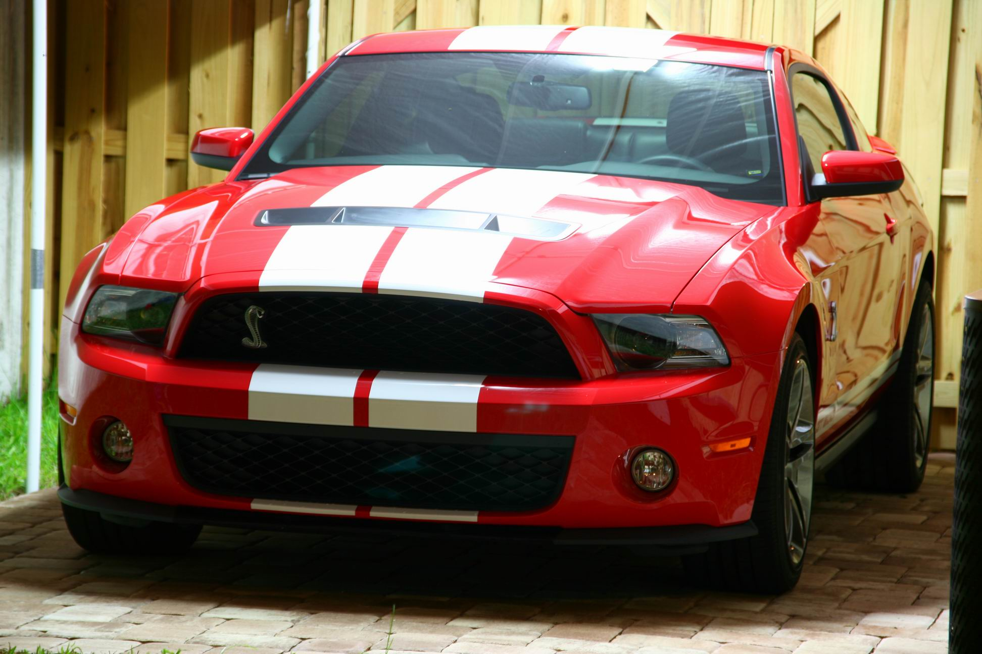 2010 Ford Mustang Shelby-GT500 1/8 mile Drag Racing ...
