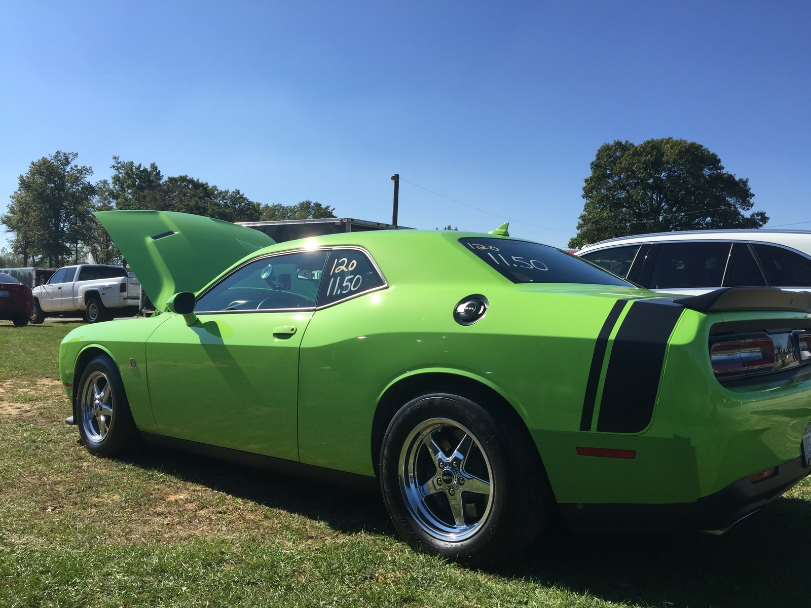 Sublime Green 2015 Dodge Challenger Scat Pack